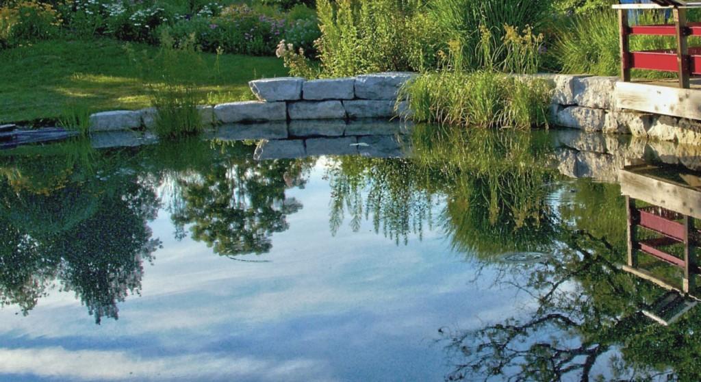 Teich und Einfriedung